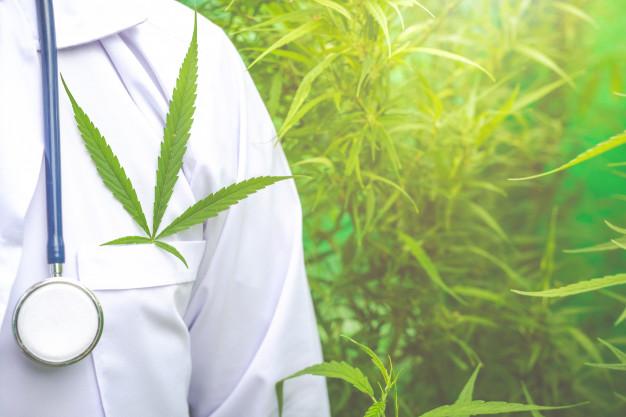 Cannabis medicinal en España