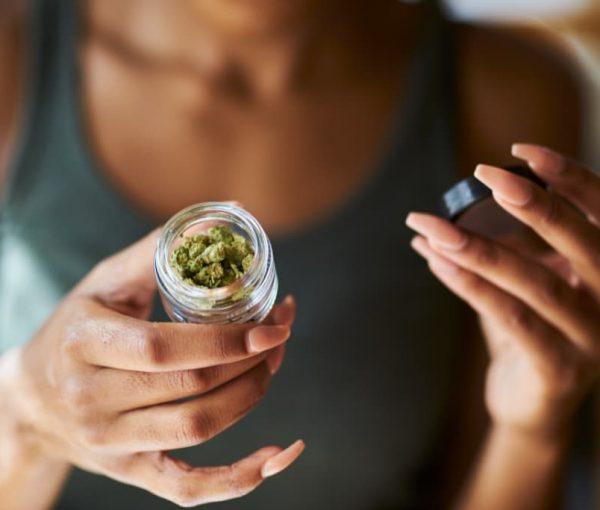 ¿Cuántos tipos de plantas de cannabis existen?