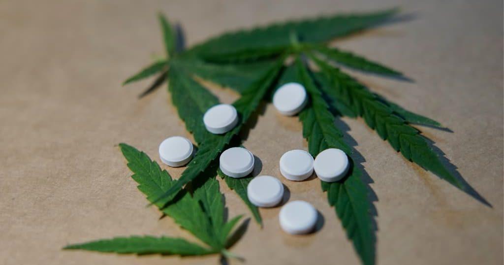 Plantas y drogas medicinales naturales